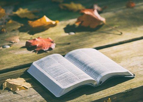 bible-1868070__340.jpg