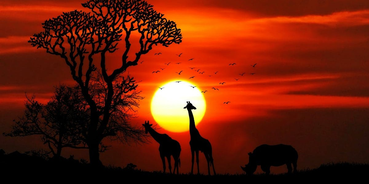 African Sunset Africa Boy